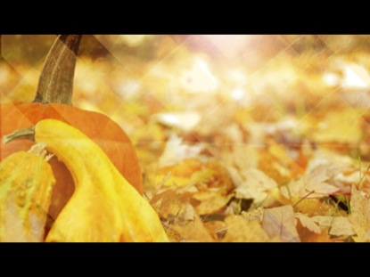 DIAMOND AUTUMN BACKGROUND