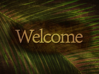 ANCIENT PALM WELCOME 2