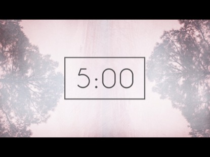 NATURES ECHO COUNTDOWN