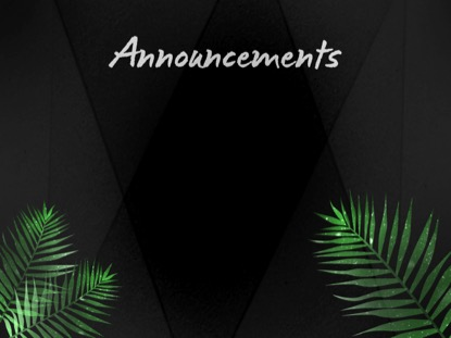 PALM LEAF ANNOUNCEMENTS MOTION