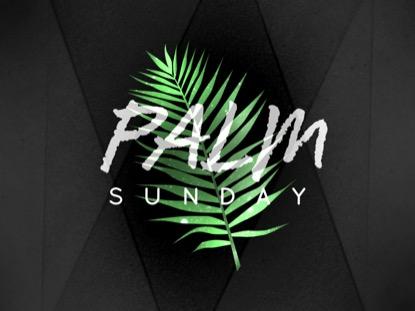 PALM LEAF SUNDAY MOTION