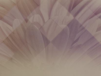PASTEL FLOWER 1 MOTION