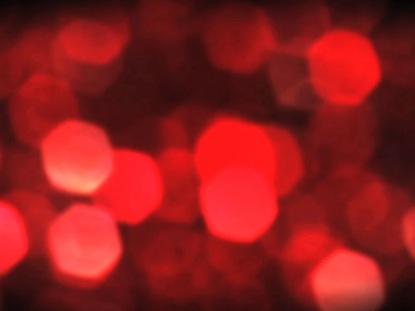 CHRISTMAS LIGHTS 6 09