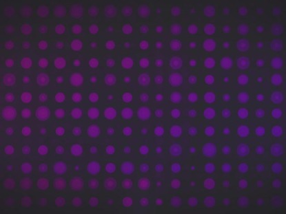 CIRCLE GRID PURPLE