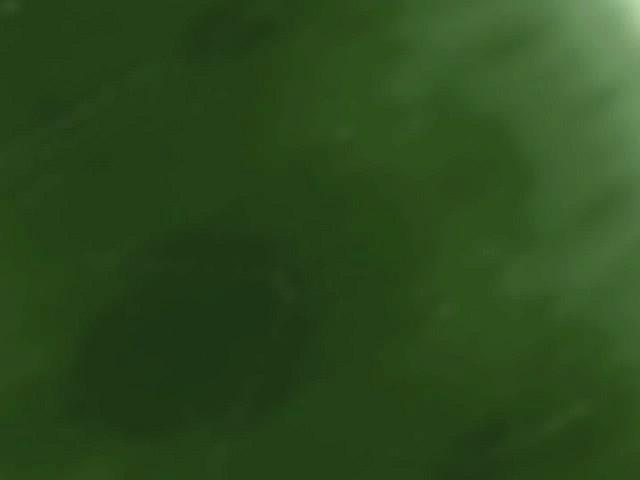 GREEN LINE SLIDE
