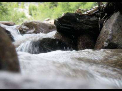 MOUNTAIN STREAM AT WATER LEVEL