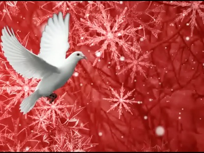 CHRISTMAS BACKGROUND WHITE DOVE