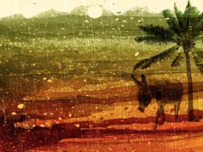 PALM SUNDAY DONKEY AND RAIN