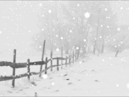 WINTER FALLING SNOW MOTION