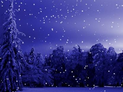 CHRISTMAS WINTER SCENE MOTION 1