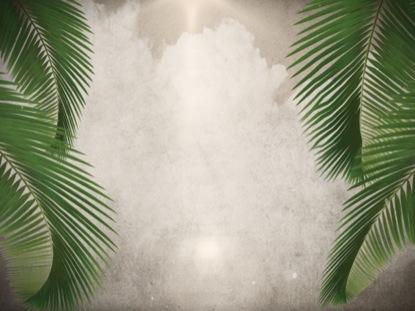 PALM SUNDAY MOTION 5