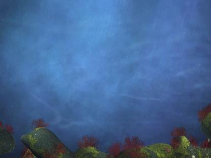 UNDERWATER OCEAN MOTION 1