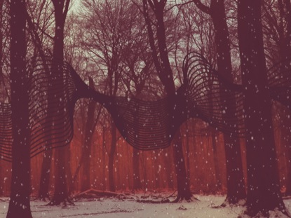 CHRISTMAS RIBBON RED FOREST