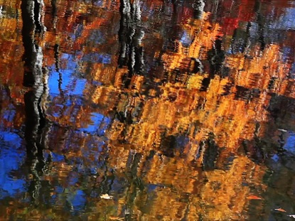 BRILLIANT AUTUMN REFLECTION LOOP