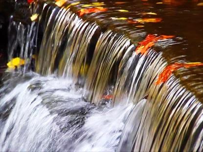 WATERFALL AND AUTUMN FOLIAGE LOOP