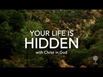 YOUR LIFE IS HIDDEN