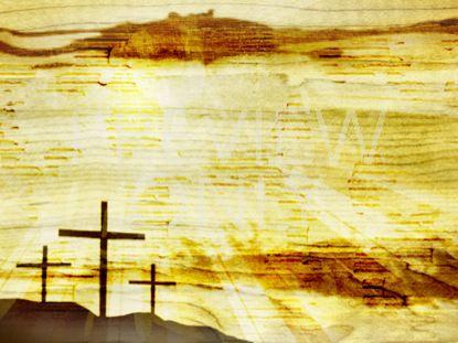 WOOD GRAIN WORSHIP STILL 3