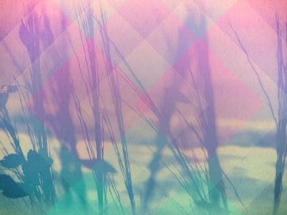 CREATION'S WONDER 03 STILL