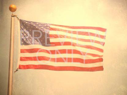 LONE FLAG STILL