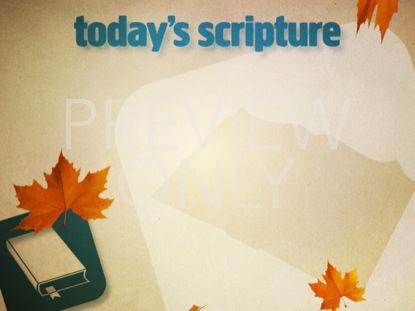SCRIPTURE FALL