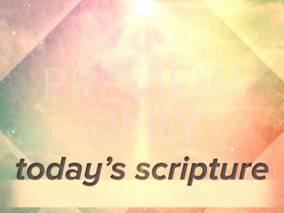 SPRING DIAMONDS SCRIPTURE