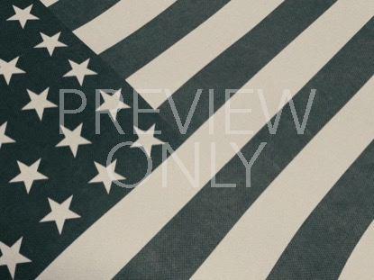 VINTAGE WAVING AMERICAN FLAG 05
