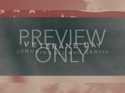 VINTAGE WAVING AMERICAN FLAG VETERANS DAY