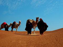 MAGI IN DESERT 1