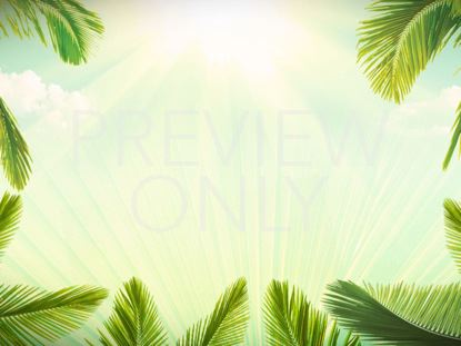 PALM SUNDAY BACKGROUND STILL