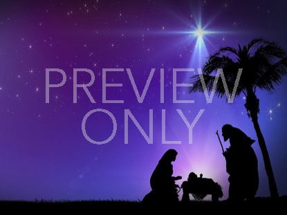 NATIVITY NIGHT