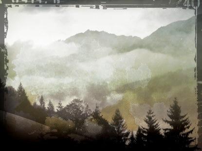 FOG LANDSCAPE 1