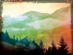 FOG LANDSCAPE 2
