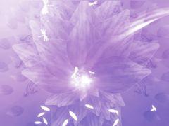 ORGANIC FLOWERS 2