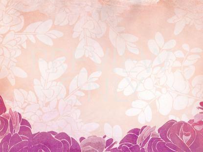 ROSES PINK-STILL