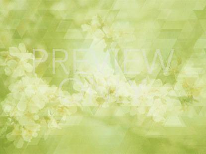 SPRING SHAPES GREEN-STILL