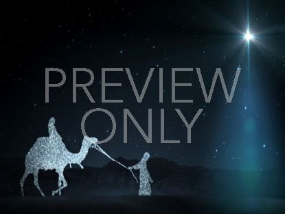 STARLIGHT NATIVITY 3
