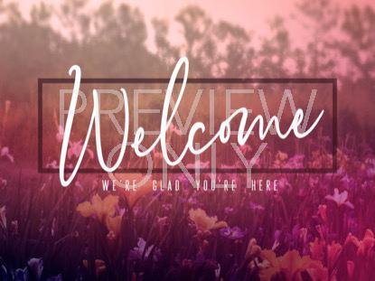 WILDFLOWER WELCOME STILL