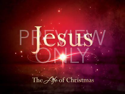 LIFE OF CHRISTMAS STILL