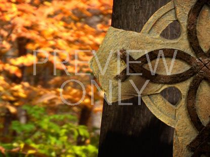 FALL FOOTAGE CELTIC CROSS