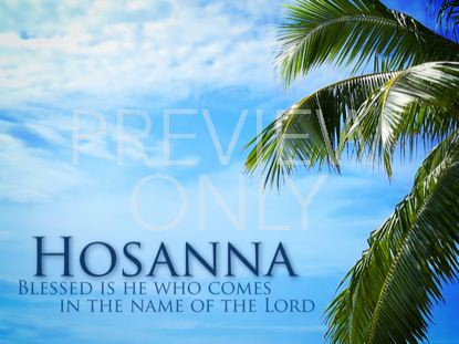 PALM SUNDAY HOSANNA TREE