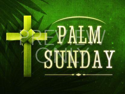 HOLY PALMS STILL 1