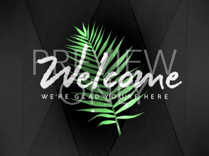 PALM LEAF WELCOME STILL