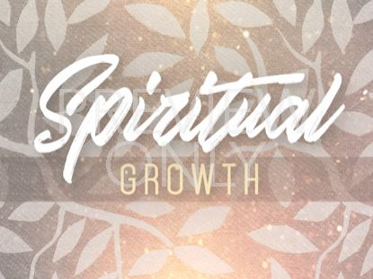 Seasonal Display Spiritual Growth Still | Playback Media | Preaching Today Media