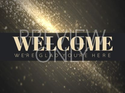 STARDUST WELCOME STILL