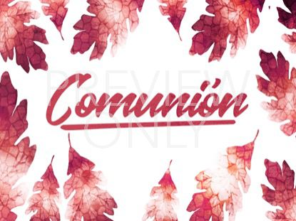 THANKSGIVING CRISP LEAVES COMMUNION STILL - SPANISH