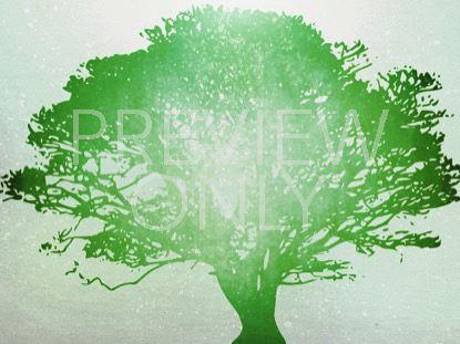 TREE OF LIFE GREEN 1 STILL