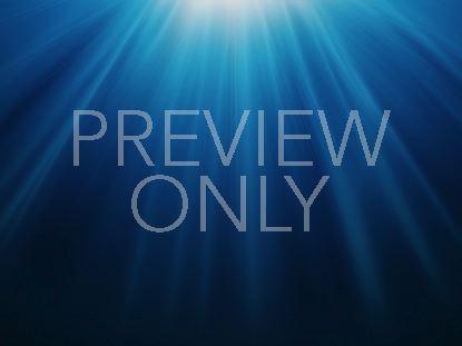 HOLY PRESENCE BLUE