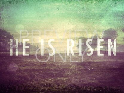 LIVING HOPE RISEN STILL